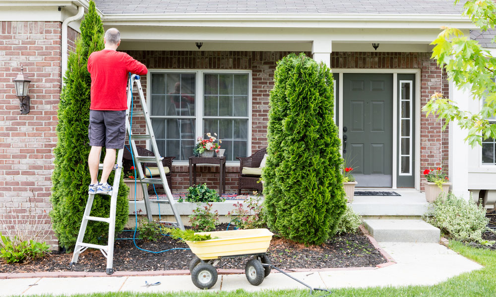 Ges clean professional and reliable cleaning services for Garden cleaning services